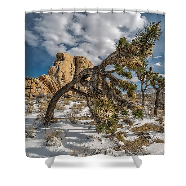 Mother And Chilldren Shower Curtain