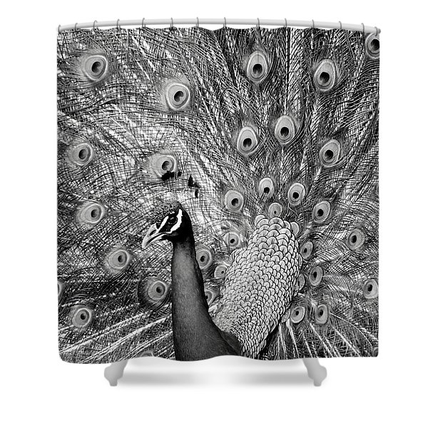 Mother Natures Fireworks Shower Curtain