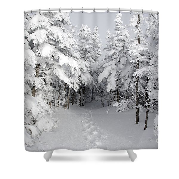 Shower Curtain featuring the photograph Mount Osceola Trail - White Mountains New Hampshire by Erin Paul Donovan