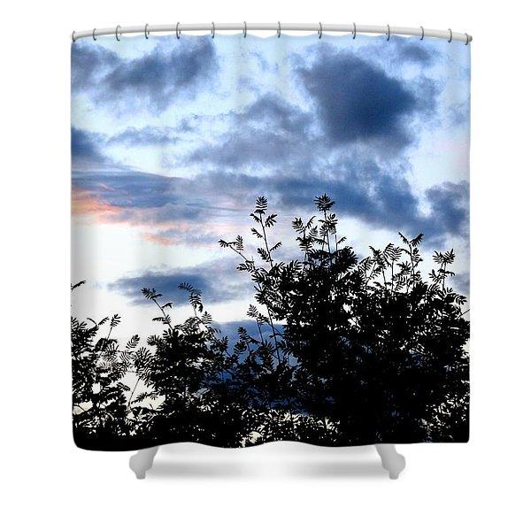 Mountain Ash Silhouette Shower Curtain