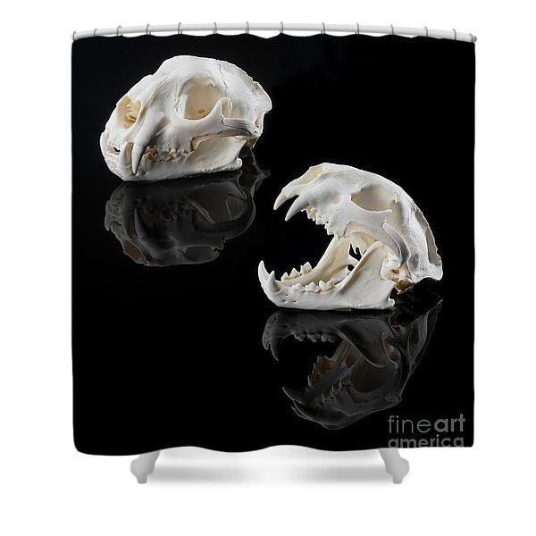 Skull Mountain Shower Curtains | Fine Art America