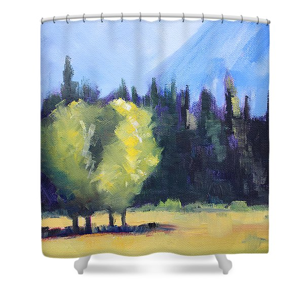 Mountain Shadows Landscape Painting Shower Curtain