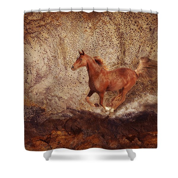 Movin' On Shower Curtain