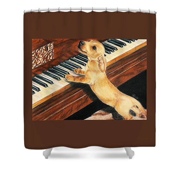 Shower Curtain featuring the drawing Mozart's Apprentice by Barbara Keith