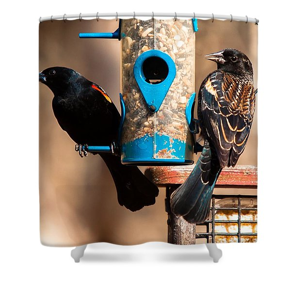 Shower Curtain featuring the photograph Mr. And Mrs. Red Winged Blackbird by Robert L Jackson