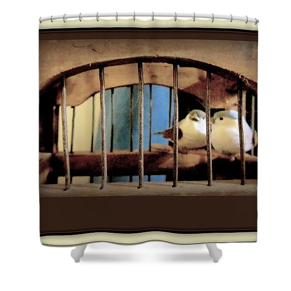Mr. And Mrs Tweety In Sepia  Shower Curtain