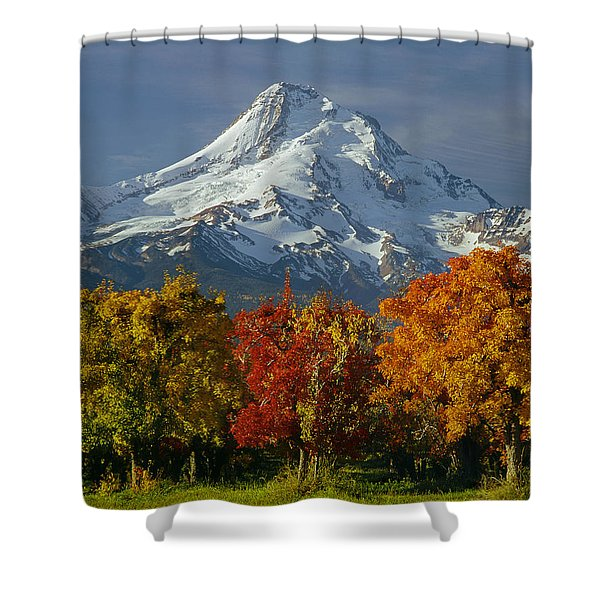 1m5117-mt. Hood In Autumn Shower Curtain