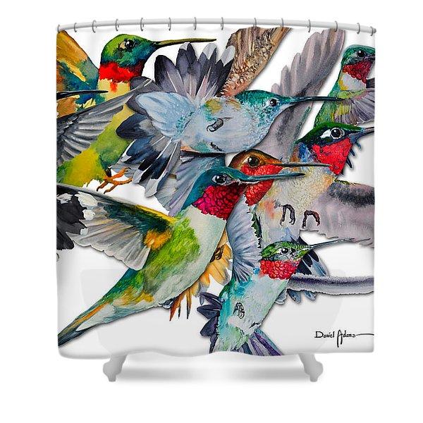 Da053 Multi-hummers By Daniel Adams Shower Curtain