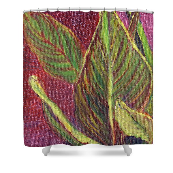 Multicolor Leaves Shower Curtain