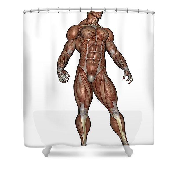 Muscular Man Standing Shower Curtain