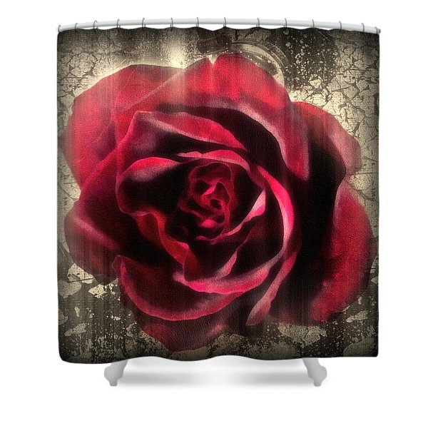 Music In The Night Shower Curtain