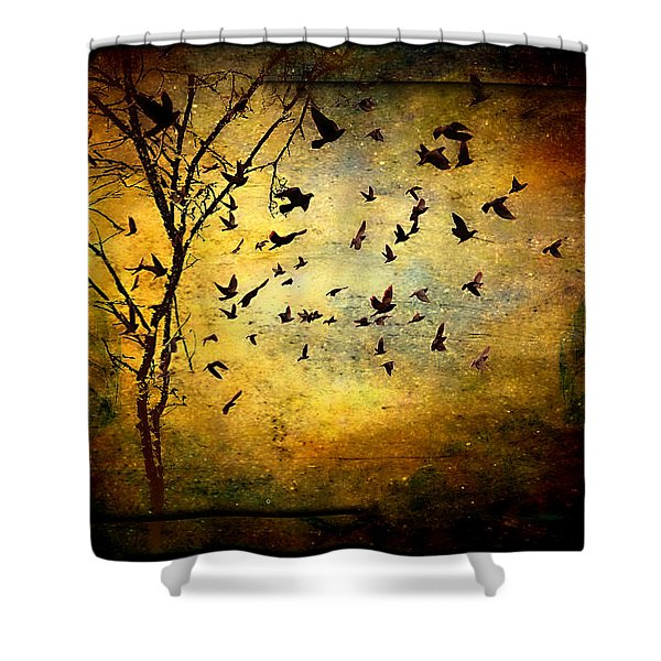 Musicisti Dell'aria Shower Curtain