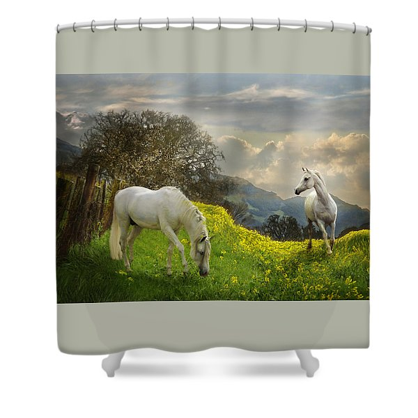 Shower Curtain featuring the photograph Mustard Reunion by Melinda Hughes-Berland