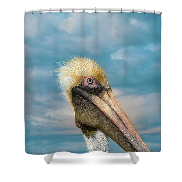 My Better Side - Florida Brown Pelican Shower Curtain