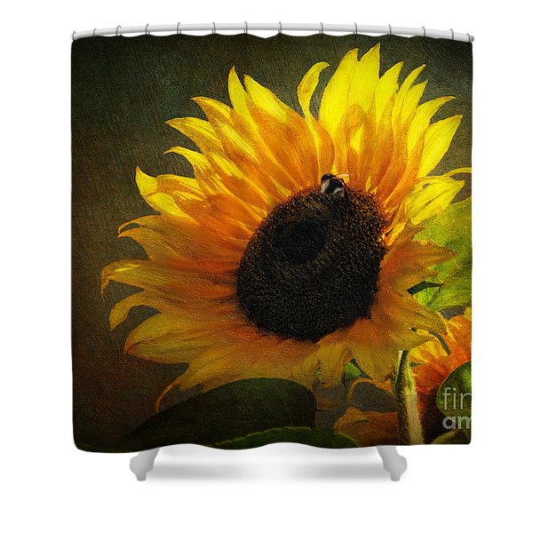...my Only Sunshine Shower Curtain