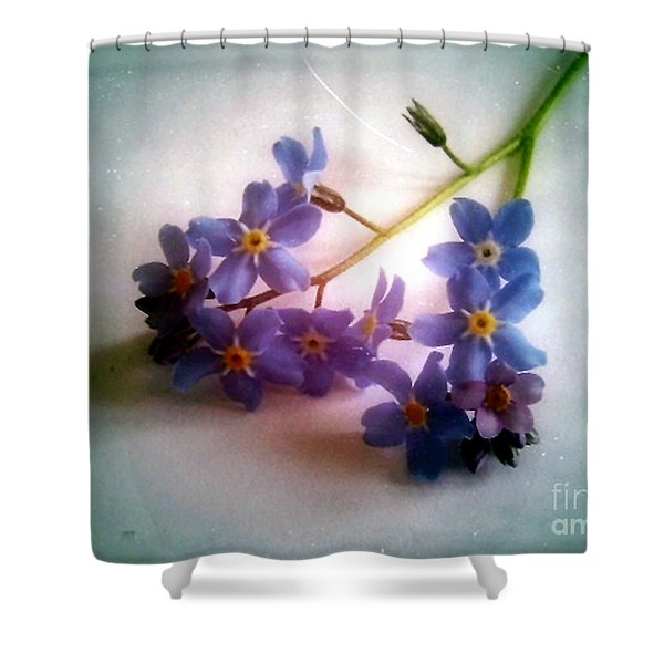 Myosotis  Forget Me Not Shower Curtain