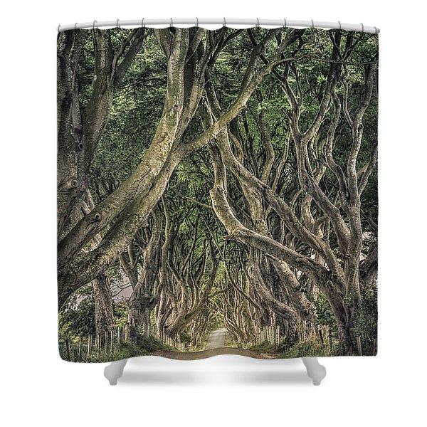 Mysterious Ways Shower Curtain