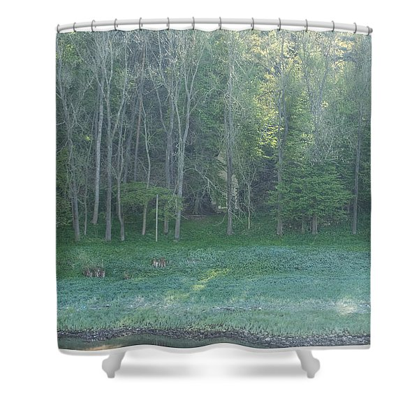 Mysterious Elbe Woods Shower Curtain