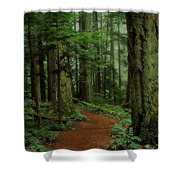 Shower Curtain featuring the photograph Mystical Path by Randy Hall