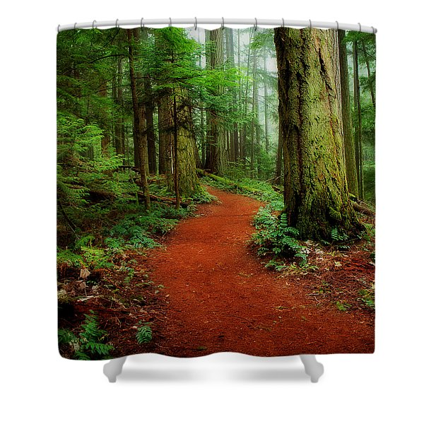 Shower Curtain featuring the photograph Mystical Trail by Randy Hall