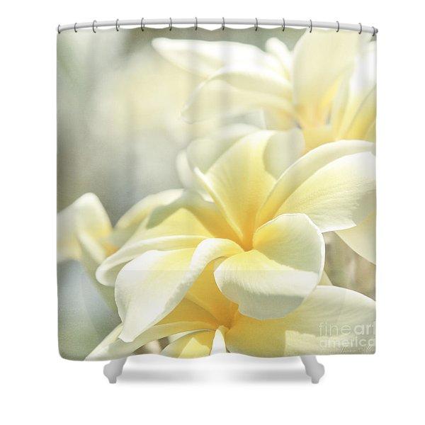 Na Lei Pua Melia Aloha E Ko Lele Shower Curtain