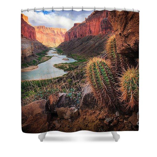 Nankoweap Cactus Shower Curtain
