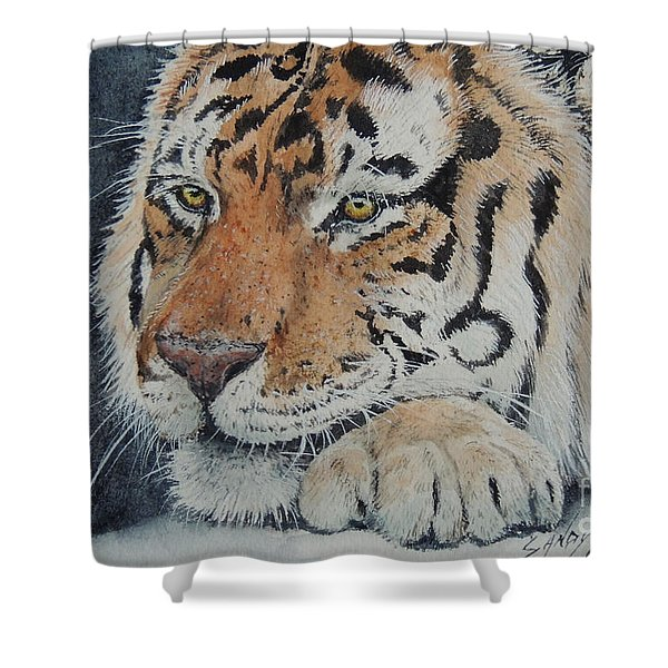Nap Time. Sold Shower Curtain