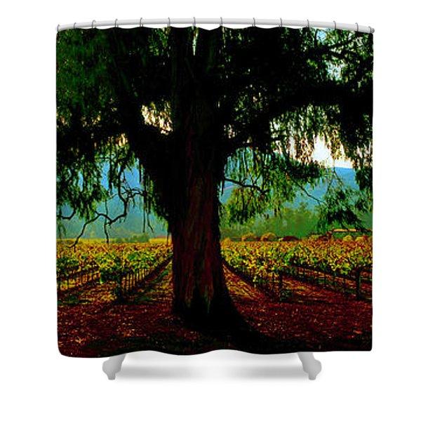 Napa Valley Winery Roadside Shower Curtain