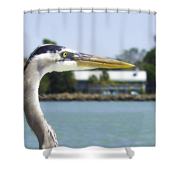 Coexistence Shower Curtain
