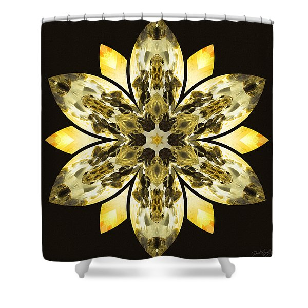 Nature's Mandala 57 Shower Curtain
