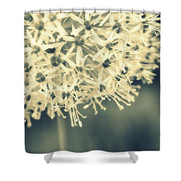Nature's Popcorn Ball Shower Curtain