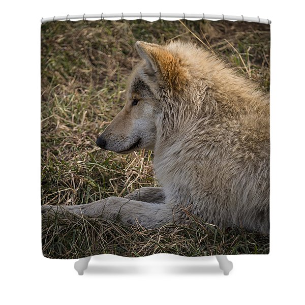 Needed Break Shower Curtain