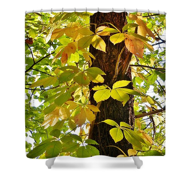 Neon Leaves Shower Curtain