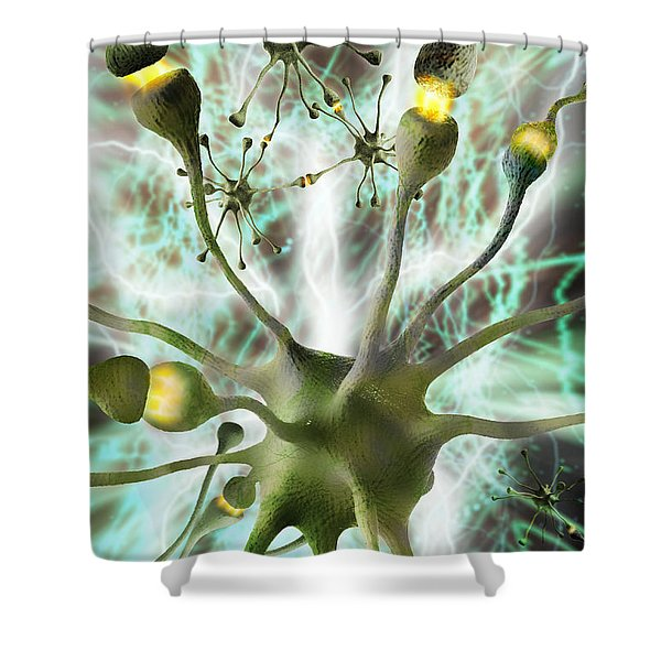 Nerve Cells And Synapses Shower Curtain