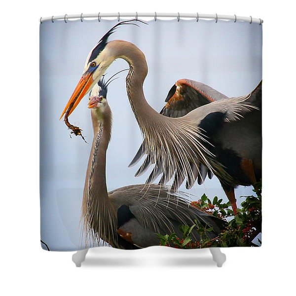 Nestbuilding Shower Curtain