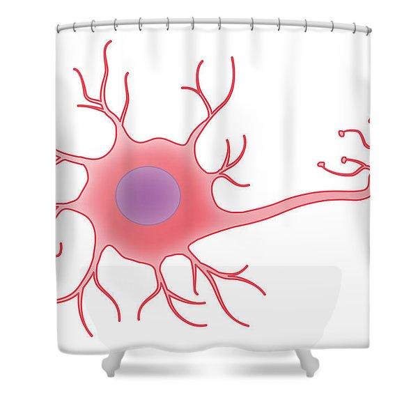 Neuron, Illustration Shower Curtain