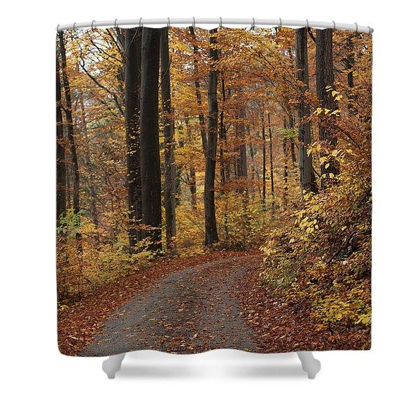 New Autumn Trails Shower Curtain