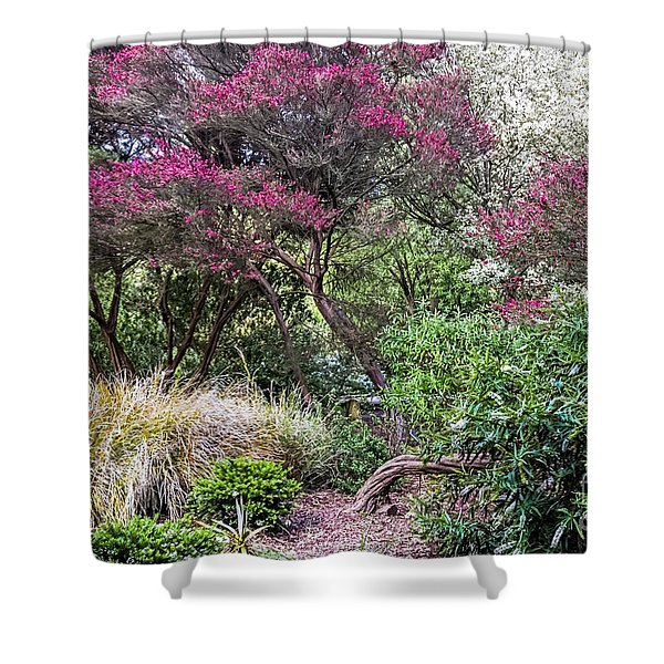 New Zealand Tea Tree II Shower Curtain