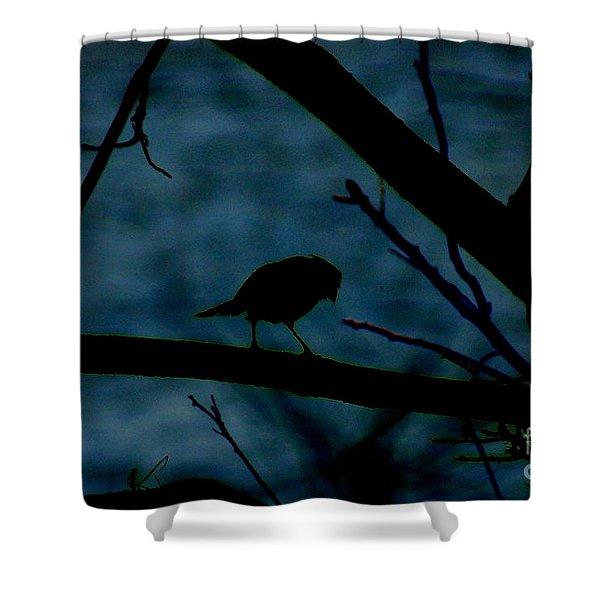 Night Bird Shower Curtain