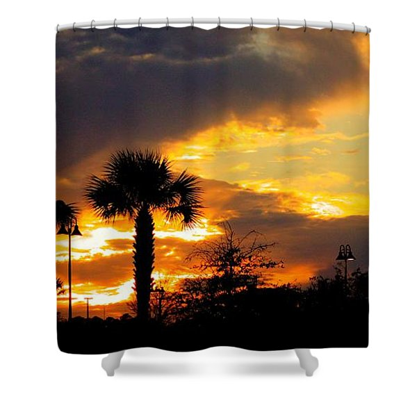 Night Fury Shower Curtain