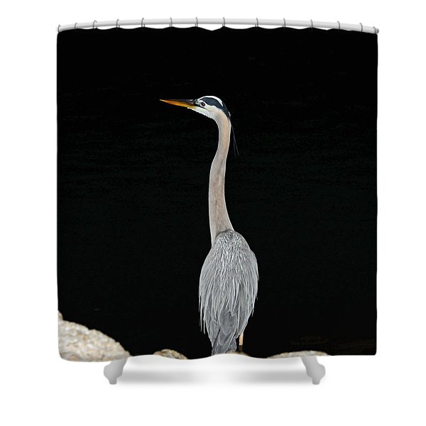 Night Of The Blue Heron 3 Shower Curtain