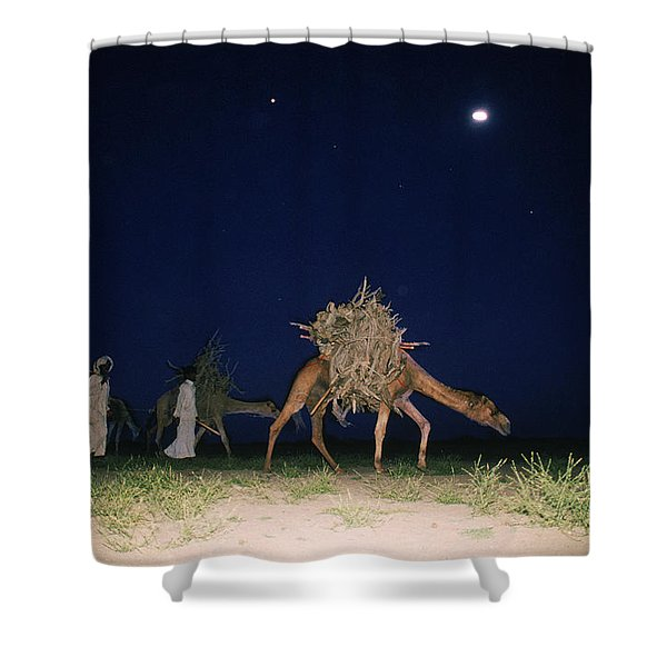 Nomads And Camels Shower Curtain