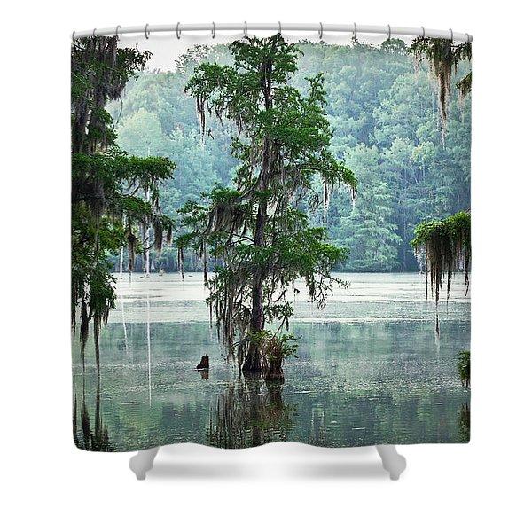 North Florida Cypress Swamp Shower Curtain