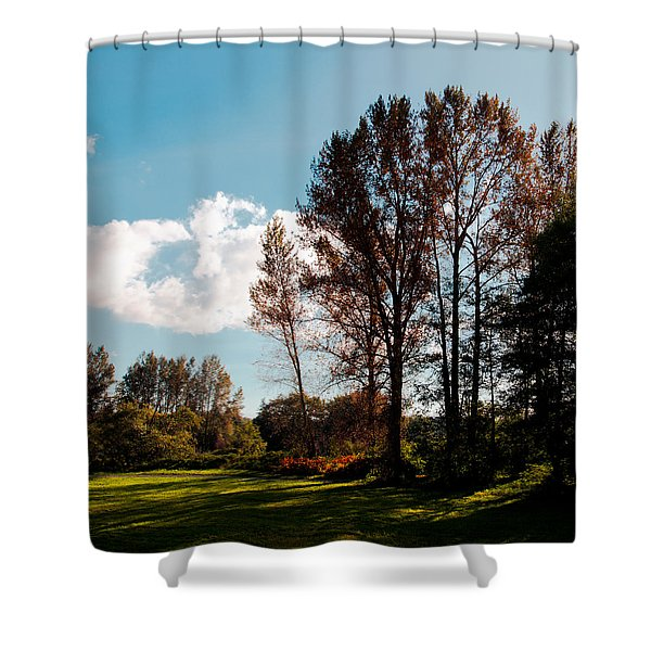 North Lions Park II - Mount Vernon Washington Shower Curtain