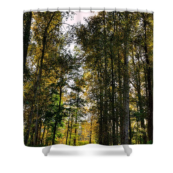 North Lions Park - Mount Vernon Washington Shower Curtain
