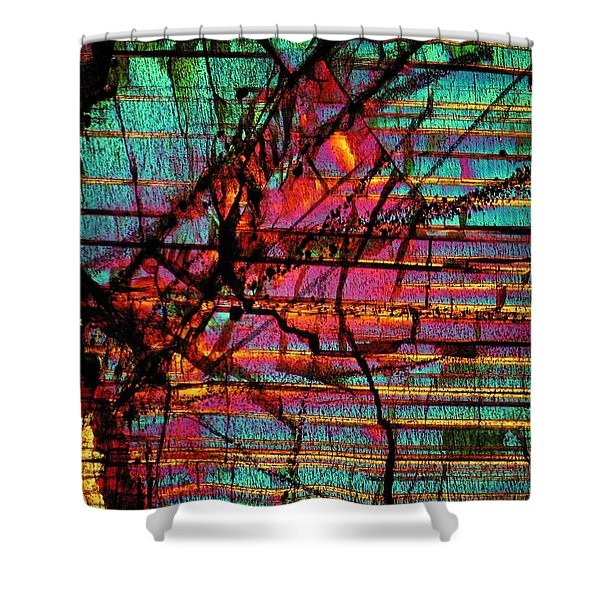 The Divide Shower Curtain