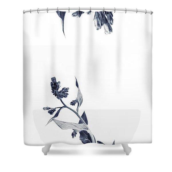 Northern Bluebells Shower Curtain