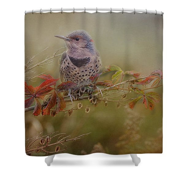 Northern Flicker In Fall Colors Shower Curtain