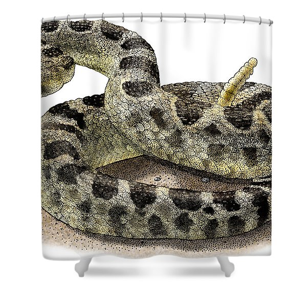 Northern Pacific Rattlesnake Shower Curtain