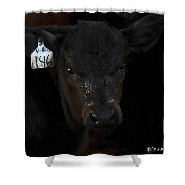 Number 146 Shower Curtain